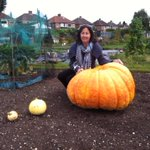 Judy Cooper from Solihull has grown this mammoth pumpkin almost by accident! Hear her on @bbcwm before 9 http://t.co/caA9hWJown