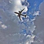 Hello #beautiful! It has just flown by! ❤️ #Dreamliner #B787 #RJ787Dream #FlyTheDream #Amman #Jordan @RoyalJordanian http://t.co/WApeNzuQsI