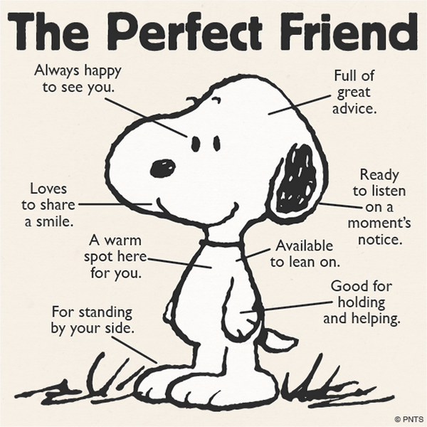 The perfect friend. http://t.co/NK1A9LLekp