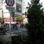 RT @hentaimimura: 渋谷って凄いな人が。毎度思う。 http://t.co/94JJrEuq5K