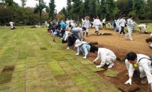 """危ない!RT""""@pecko178: 放射能の基本が全くわかってないよ、この人達 ↓ *茨城県守谷市、放射能汚染で公園芝を除染、枯れた芝の張替えに市民250人(9/20 東京新聞) http://t.co/VSTxIEQbTR . http://t.co/bmrqHrMd1V"""""""