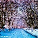 RT @GaryHolpin: Sundays #photo is snow in the #Blackdown #hills #Devon & #Somerset #southwestuk #photography #nature ????http://t.co/al96xGMMUP