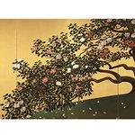 """[明日から開催] 展覧会「輝ける金と銀」渋谷・山種美術館で開催 - 日本画家にとっての""""金""""と""""銀""""の変遷 - http://t.co/AWsp4WnE6X http://t.co/ifajs7dl27"""