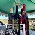 RT @Newbe_Fest: #NewportBeachs only fully working winery and theyre here today pouring three of their best #wines. #NBWFF http://t.co/PdWwczB8Hp