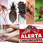 RT @Reportero24: MANUEL MALAVER: El socialismo en tiempos de default y chikungunya http://t.co/CAK5gEAHGt ¿pagar o agudizar la crisis? http://t.co/7OUZeG2Llg