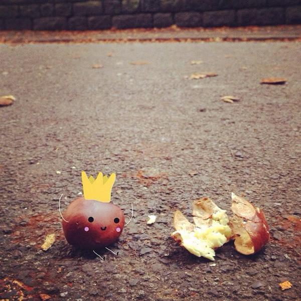 He came, he Conkered (William the conkerer ) http://t.co/wMNn9w7dcQ