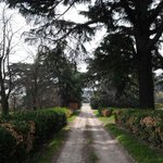 RT @espaciomadrides: Visitas Guiadas Gratuitas a los Jardines de #TorreArias a partir del 2 de octubre http://t.co/oSiE4pxOKt #Madrid http://t.co/FCF7j896gq
