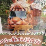 富士サファリパークのバスが何かに似てると思ったらwww  _人人人人人人人_ >KBTIT!?<  ̄Y^Y^Y^Y^Y^Y ̄ http://t.co/o7XPriLwr4