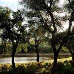 RT @DiarioSUR: En #fotos | Un recorrido por @GranSendaMalaga en #otoño. http://t.co/60eHvSa9No http://t.co/6d95tYX6Hf