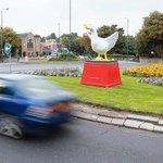 Whhhoooooooooooooo! #Nottinghams famous #GooseFair goose is back! Have you spotted him? http://t.co/CtNHKNcHaY http://t.co/jwa9XZjXsc