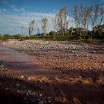 RT @Pajaropolitico: 25 mil habitantes de Sonora en peligro por un nuevo derrame de tóxico en #RíoSanPedro http://t.co/Cu7hH6Px7b http://t.co/PhpWJnq96O