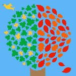 10:29 p.m.-- This minute marks the autumn equinox, signifying the beginning of fall in the Northern Hemisphere. http://t.co/WJObtodP7l