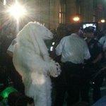 RT @syndicalisms: #FloodWallStreet Polar bear getting arrested now. http://t.co/CT9Yr8Knhs via @AdamTJanos