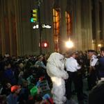 RT @RT_America: The polar bear has been arrested by the NYPD #FloodWallStreet http://t.co/R0RLax87Ou