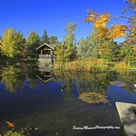 @usask @innovationplace @VisitSaskatoon @Saskatchewan #Boffins #Usask #fall colours http://t.co/kxBrEybu0R