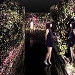 チームラボが花々モチーフのインスタレーションを展示 - 大分・国東半島芸術祭にて http://t.co/hsDIDa1qwl http://t.co/yV8jEIiUES