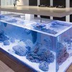 【コレは欲しい】水槽つきのキッチンが、すぐ鮮魚を食べられそうで素晴らしい! http://t.co/ttWoVYokHA そして、かなりおしゃれ。 http://t.co/8StYEZ7NAD