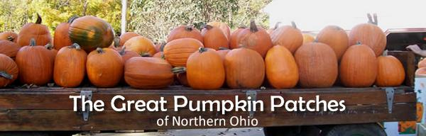 The Great Pumpkin Patches of Northern Ohio can be found here. http://t.co/ja32yuta3G http://t.co/zIbwFnThDk