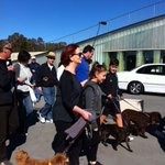RT @Tiffany_King: She walked around the lake with us and Reuben for #millionpawswalk #Gillard #bestPM http://t.co/88REhUvw73