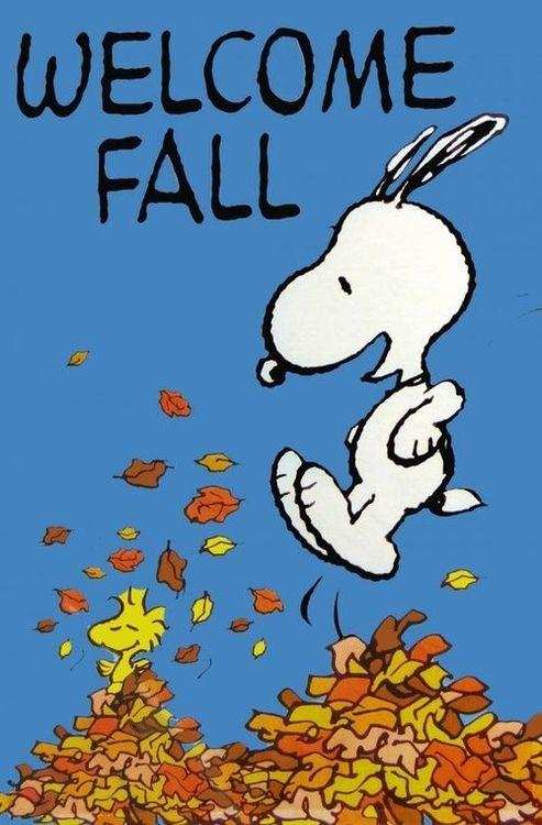 Happy Fall! http://t.co/bGiVAgV0VR