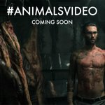 Maroon 5 tease the #AnimalVideo: https://t.co/cigYrkdZtc #Animal