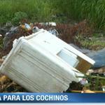 Administrador de @AAUD_Panama: Unos 10 mil dólares de multa para personas que arrojen basura a las calles #Panamá http://t.co/LEnzgliPCf