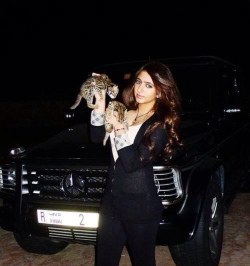 함단왕자님 동생 마리얌도 오빠에게 지지않는다 차앞에서 찍은거 설마 고양이겠지 하고 한참 봤던 사진 http://t.co/dWb5YA9qde