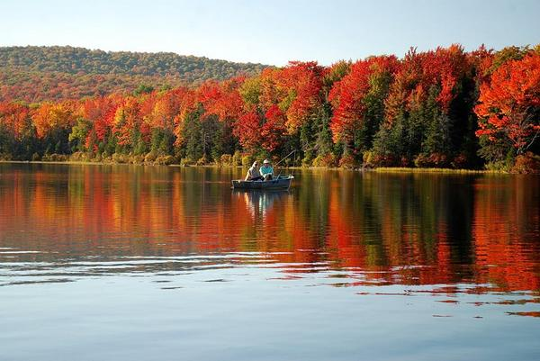 This pic is from Seyon Lodge State Park yesterday. Get out there! #Vermont #VT #foliage http://t.co/9rYlB2nmua