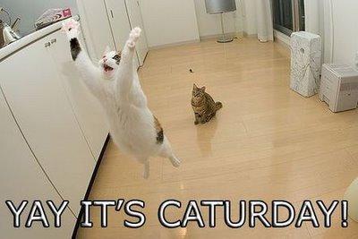 @kamajowa @BJTkittyluv @HereComsTrouble @Melodiousheart @antoine10280271 @mark1952ind Happy Saturday all!