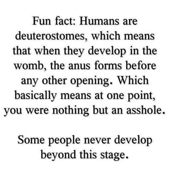 Fun fact: http://t.co/N6eyRJoF0q