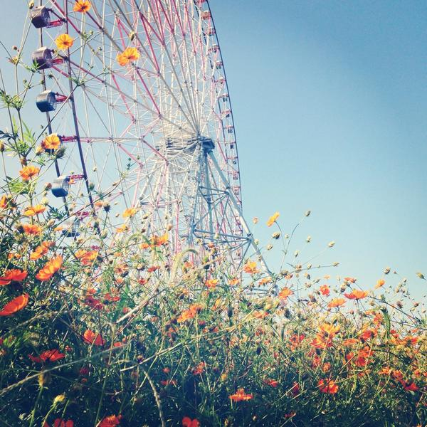 葛西臨海公園。観覧車に乗るだけのつもりが、東京にもこんなところがあるんだなあとなごんでしまう。 http://t.co/Muzing8P6t
