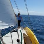 RT @SwellTimeSail: Sailing from Oceanside today, just off #camppendleton #sailing #oceansidechamber #visitsandiego http://t.co/YI3erE4HaD
