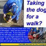 At least one dog a week needs to be rescued by Coastguards. Keep your dog on leads near cliffs. #Penarth #dogs #Barry http://t.co/hQAYblNSn9