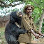 RT @HelloBleached: #mcm sloth bear http://t.co/PFBuHX73xE