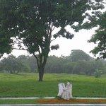 RT @scrooge74: @BlandonJose @prensacom @parquespanama la CSS tiene un terreno en Chanis que debiera ser un parque http://t.co/mwnAwj6xIB
