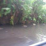 RT @gabymonty27: Buenos dias @TReporta para denunciar pequeña laguna entrando directo x Villa Zaita, Las Cumbres y forma tranques. http://t.co/gzjgV8a51I