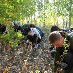 В лесхозах Ульяновской области идет заготовка семян. Фоторепортаж http://t.co/bS4fGDM6Rx http://t.co/RsoCh0ZxY0
