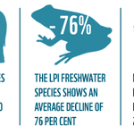 """""""World Wildlife FTSE"""" index by @WWF & @OfficialZSL shows 52% decline in planets wildlife in 40 years http://t.co/G2bg9CTj2J"""