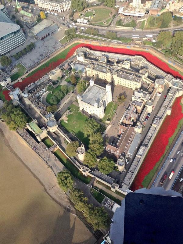 More fantastic photos of #towerpoppies from @MPSinthesky - Thank you yet again for this pic. Wonderful as always. http://t.co/Kx9ZDrDSqf