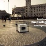 RT @junqueras: #mutsialagabia no ens hi quedarem. Al segle XXI, a Europa, no podran silenciar la voluntat dun poble. #9N2014 http://t.co/zXWHIZk95C