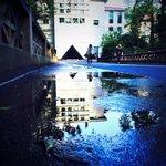 early morning @carlosmuseum puddle reflection @EmoryUniversity #ATL #photo http://t.co/2fz2MuGTwf