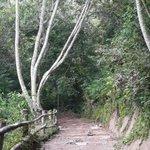 Vista del Parque Bicentenario de San Salvador. Foto Margarita Funes #ElSalvador http://t.co/JXJcn11TGo
