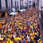 RT @AlfonsHosta: @AlfonsHosta #9N2014VotaremSiSi #9N2014 Girona placa del vi http://t.co/3R9rT4dzcE