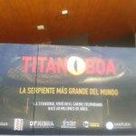 ¡Felicitaciones al @inst_humboldt por traer de vuelta a la Titanoboa a Colombia! ¡Hay que verla! Cc. @elespectador http://t.co/fnTnSItNyo