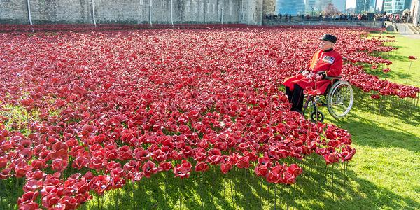 Three generations of Servicemen and women pay their respects at #Towerpoppies this weekend. http://t.co/EaBoAfh8vx http://t.co/4vbet2LpRC