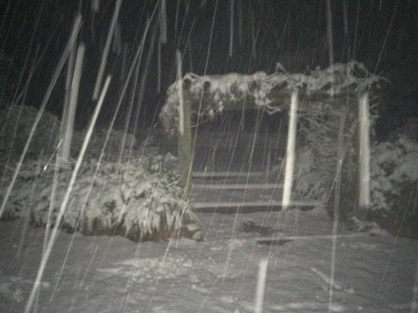 RT @Andrew_Lark: @abcnews I can hear trees snapping under the weight of the snow. Nearly 1 foot has fallen and it's still coming down. http://t.co/ELFg2PAdaW