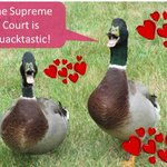 "RT @pshapiro ""BREAKING! Supreme Court allows #CA ban on #foiegras to stand. Ducks everywhere celebrate!  … http://t.co/5IaQ7OnYeR""..."