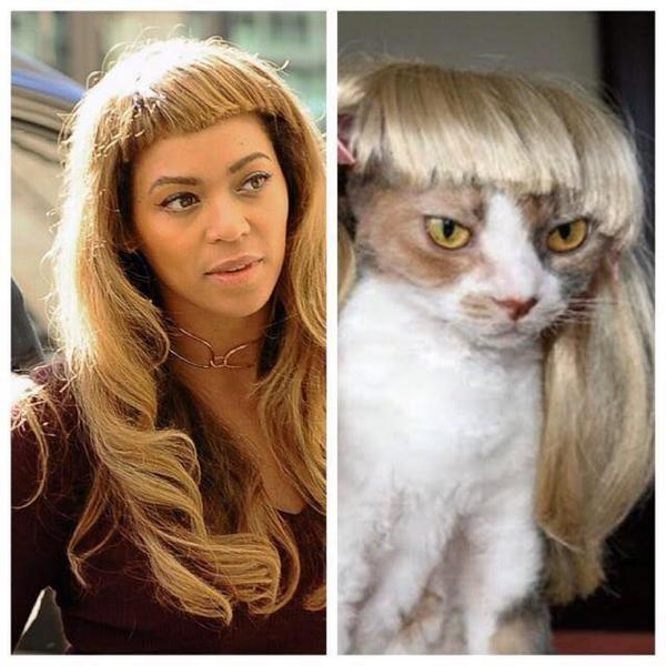 Just gonna leave this here #Beyhive http://t.co/8qjawlkXL0