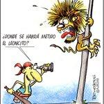 #LVBP Magallanes 4- Leones 1 (FINAL) http://t.co/DwDBPyNbv3