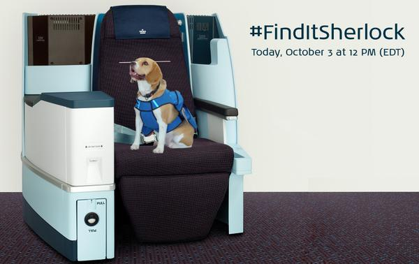 At 12pm share your story of lost items using the #FinditSherlock hashtag, and Sherlock will be online to help! http://t.co/7B7iKkFp4q